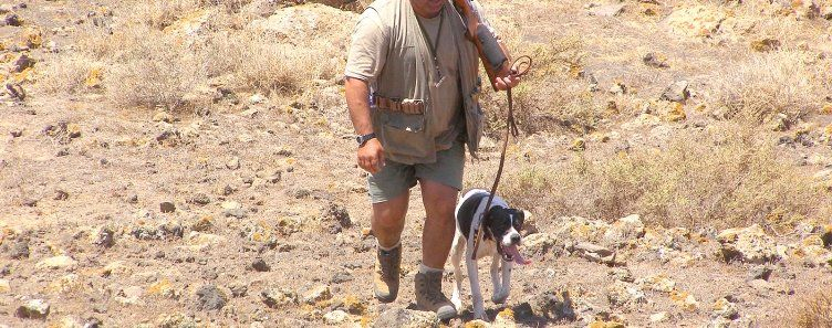 Imagen de archivo de un cazador con un perro